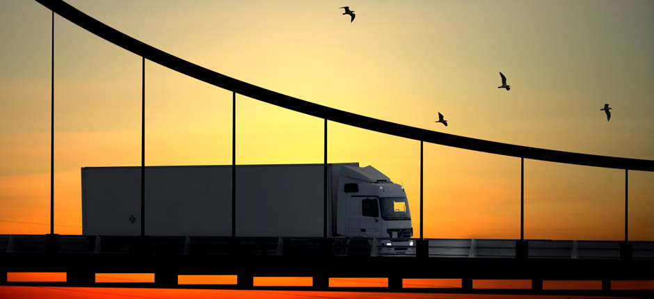 camel-thorn-freight-forwarding-road